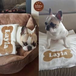 Honden deken met naam